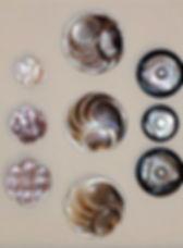 profilo_museo_del_bottone.jpg