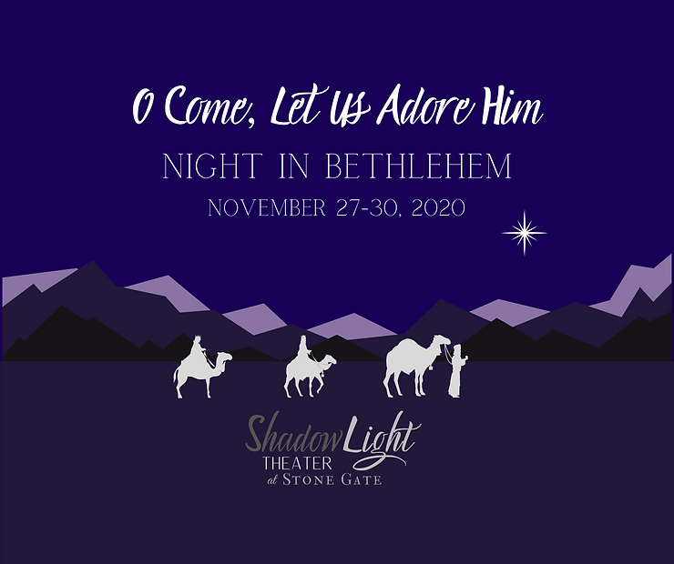 Night In Bethlehem Image.png