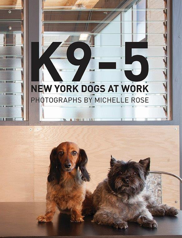 k 9-5 New York Dogs at Work