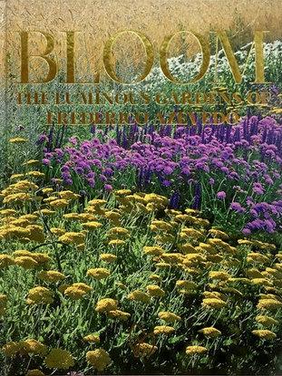 Bloom : The Luminous Gardens