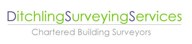 ditchling-surveying-services-logo.jpg