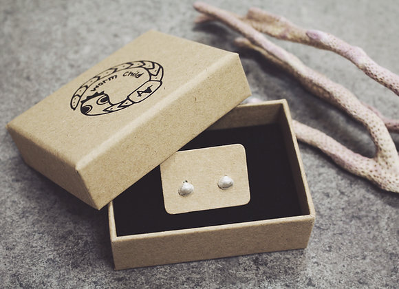 Micro Shell Earrings