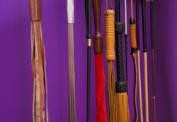 Whips, Canes and Floggers