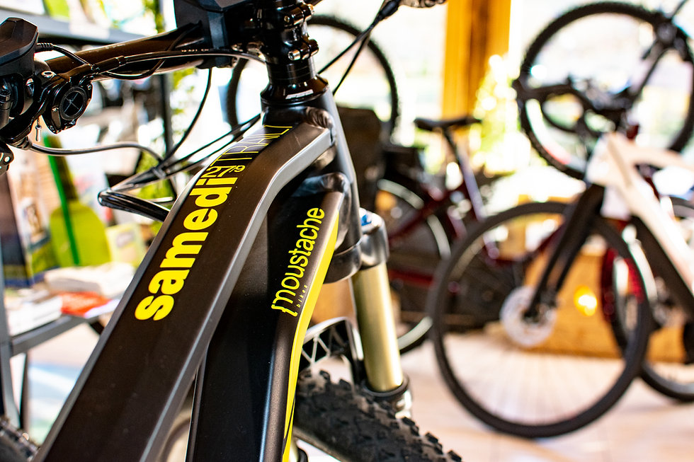 Vente et location de vélos à assistance électrique Hautes Vosges. Je lou, je teste, j'achète ! VTT électrique