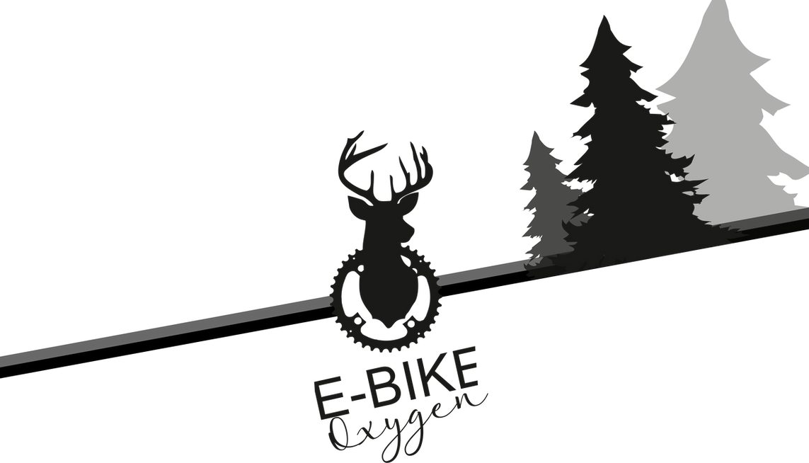 VAE famille Shop E Bike Oxygen Bussang, équipemnt et accessoires VTT, Vente et location de vélos à assistance électrique à Bussang, Hautes Vosges. Avec E Bike Oxygen _ Je loue, je teste, j'achète ! VTT et vélos de route électriques