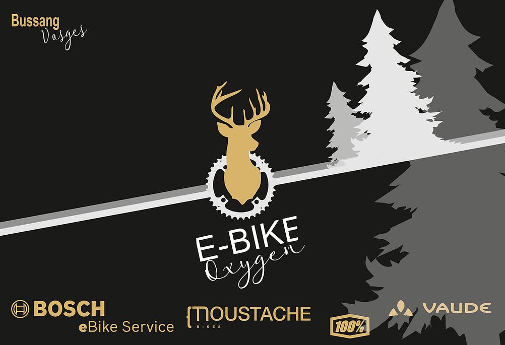 E Bike Oxygen vente location réparation VAE Vélo assistance électrique bussang Hautes Vosges Moustache Vaude