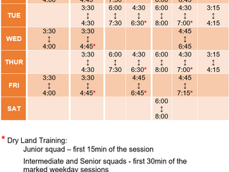 Updated Term 4 Timetable