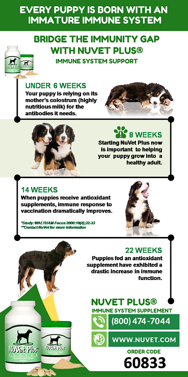 Woodland Puppies Imm Gap Text-FB (1).png