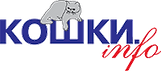 КОШКИ-ИНФО-002.png