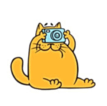 cartoon-orange-cat-camera-taking-260nw-1