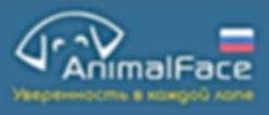ANIMALFACE-001.jpg