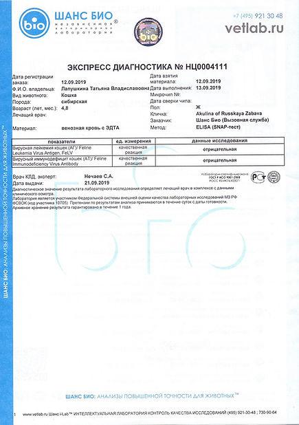 2019.09.12 - АКУЛИНА РЗ.Микоплазмоз Mico