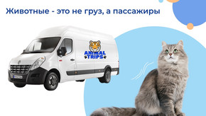 """ANIMAL TRIPS"" - БЕРЕЖНАЯ ДОСТАВКА ВАШИХ ЖИВОТНЫХ"