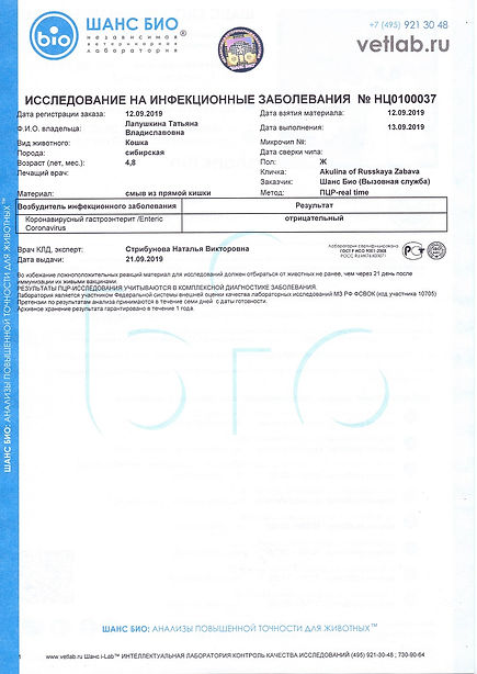 2019.09.12 - АКУЛИНА РЗ.Коронавирус FCoV