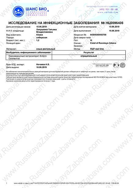 2019.06.15 - ESKEL RZ.Enteric coronaviru