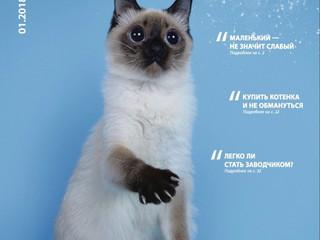"""""""Подари себе счастье или мифы о покупке котенка"""" журнал """"Кошки Инфо"""", №1, январь"""