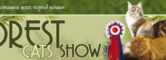 """16-17 сентября 2017 г. Москва. Международная выставка кошек """"FOREST CATS SHOW - 2017"""" (РОО"""