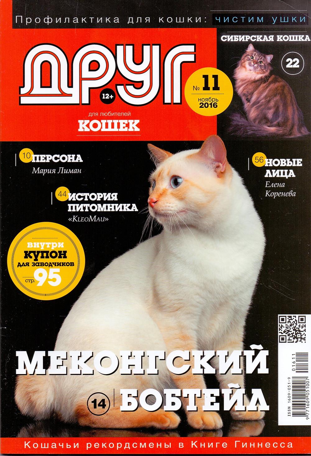Друг любителей кошек. Сибирская кошка