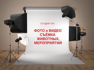 """Знакомьтесь - Студия """"ViK"""""""