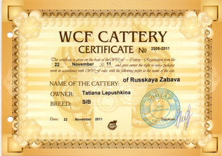 Регистрационный сертификат питомника кошек WCF, сибирские кошки, котята, siberian cats, kitten, сибирские кошки, котята, siberian cats, kitten