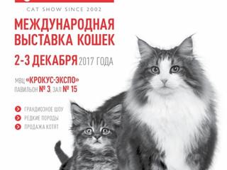 """02-03 декабря 2017 г. Москва. Международная мультисистемная выставка кошек """"GRAND-PRIX ROYAL CA"""