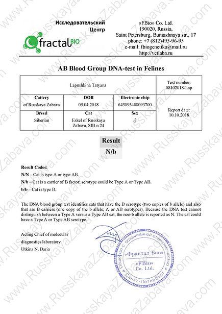 2018.10.08 - ESKEL RZ.Группа крови DNA-t