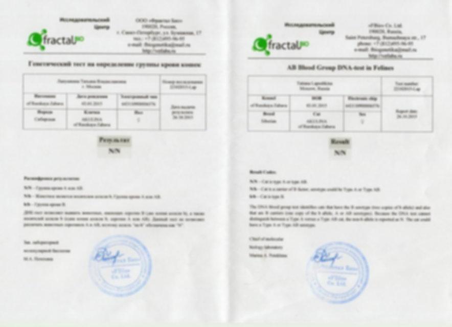 26.10.2015 - АКУЛИНА РЗ.Группа крови DNA-test RUS