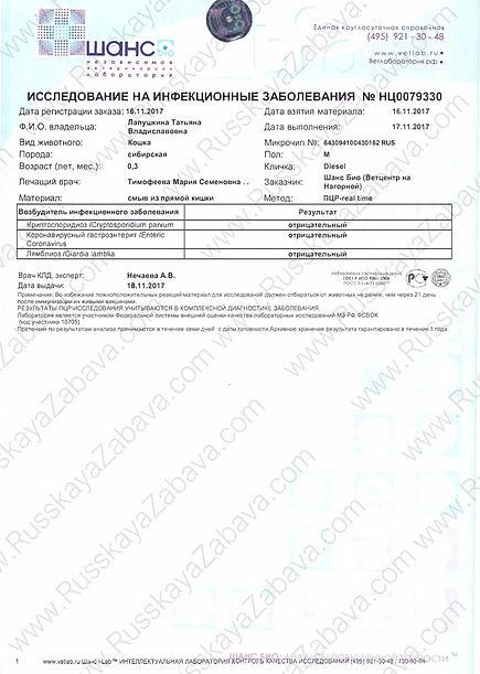 2017.11.16 - DIESEL RZ.Enteric coronavir