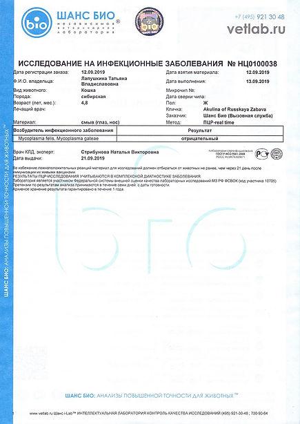 2019.09.12 - АКУЛИНА РЗ.Лейкоз FeLV, Иму