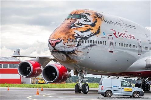самолет аэрофлот амурский тигр