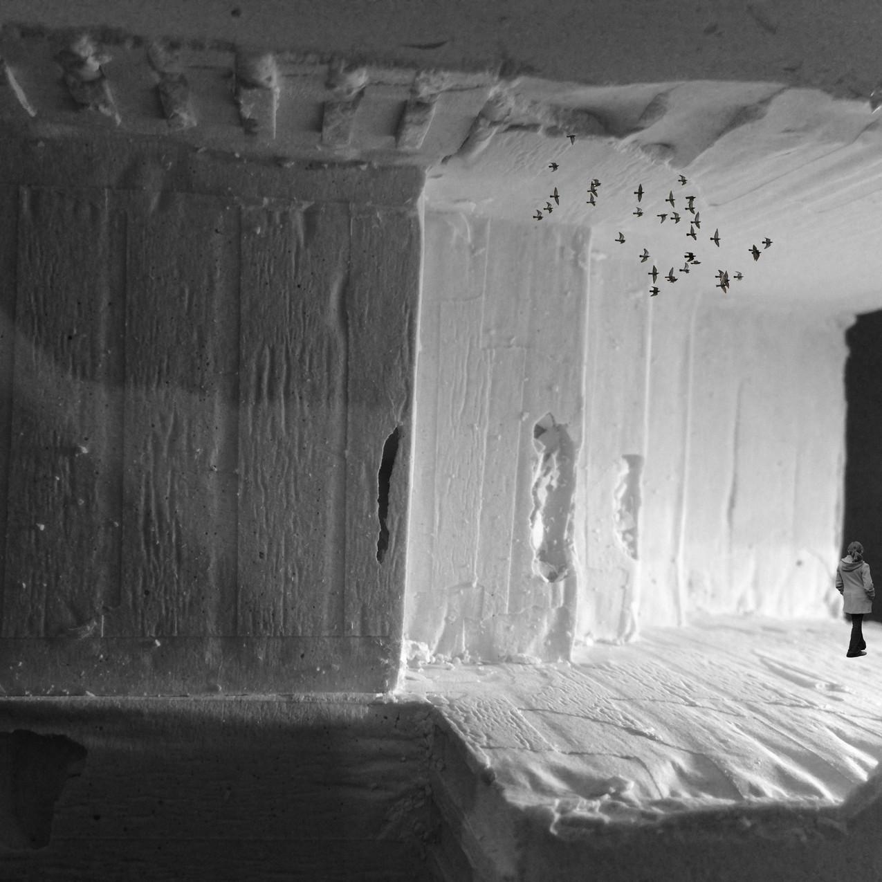 Plaster Cast, Abandonment Marie Ciarleglio