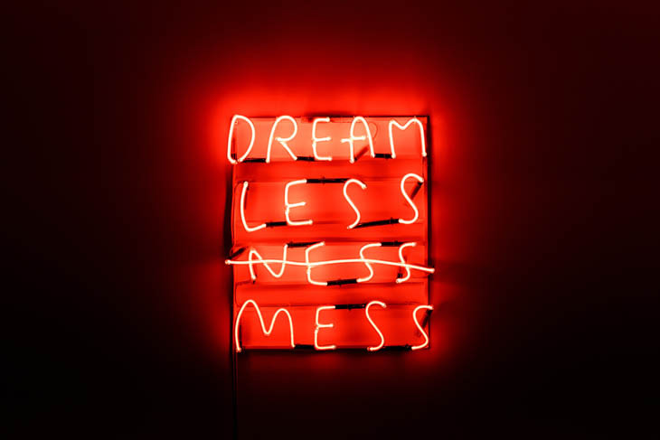 """Dream Less Ness Mess"" from the Eco-Visionaries exhibition"