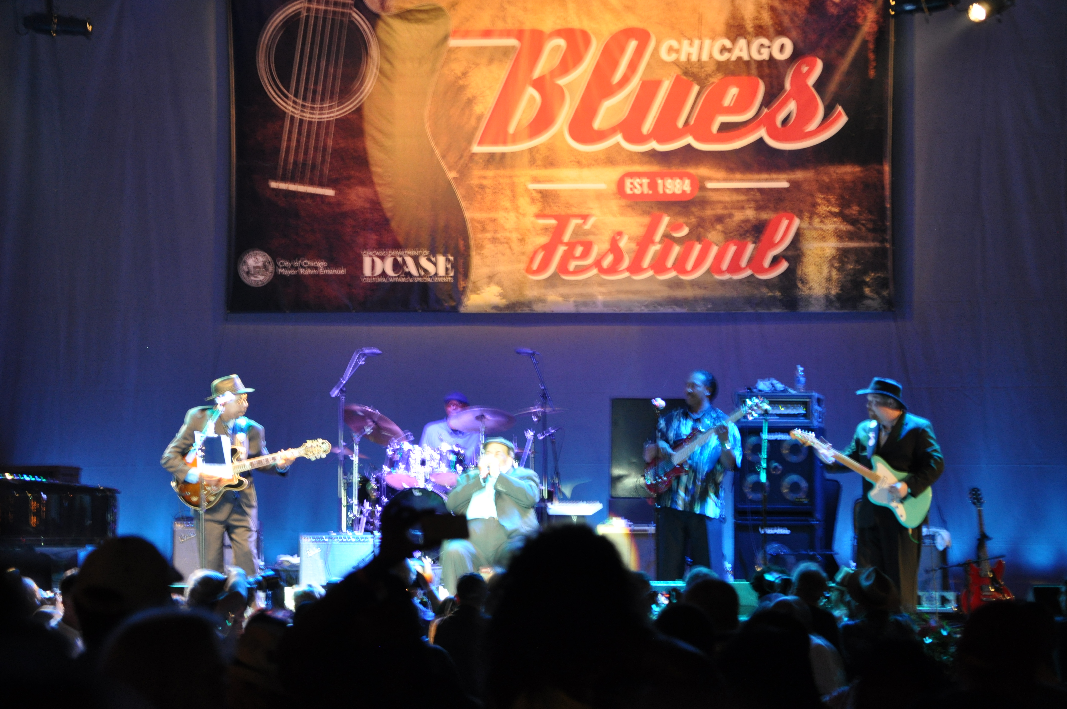 Chicago Blues Fest.JPG