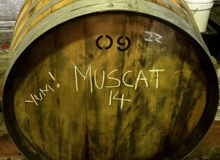 Inaugural Arthur Wines Muscat NV Coming Very Soon!