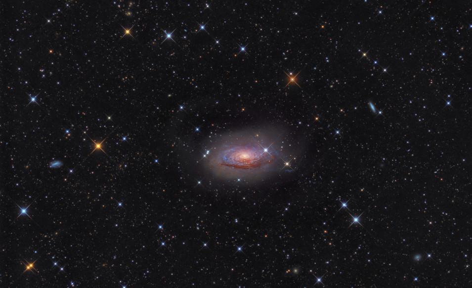 La galaxie du Tournesol