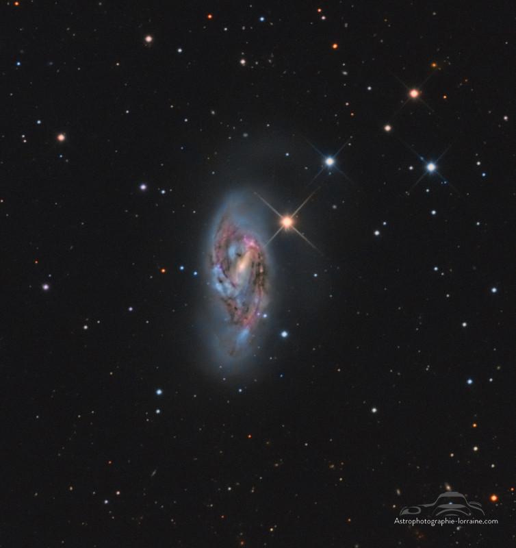 The galaxy M64