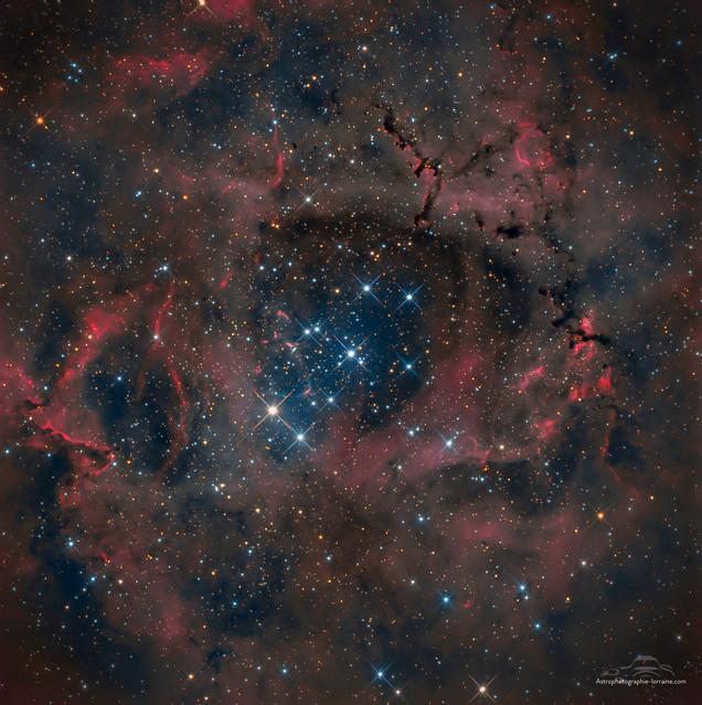 The Rosette Nebula (RGB version)
