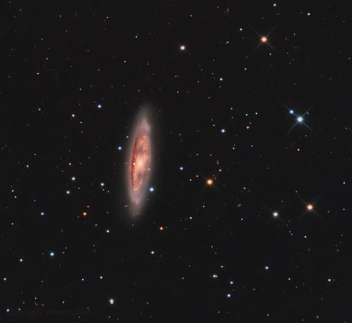 La galaxie M65