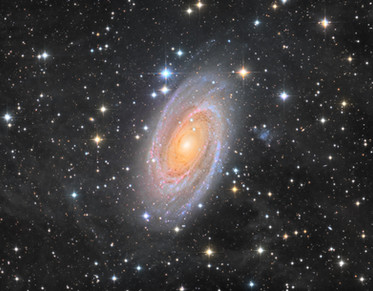 The Bode Galaxy