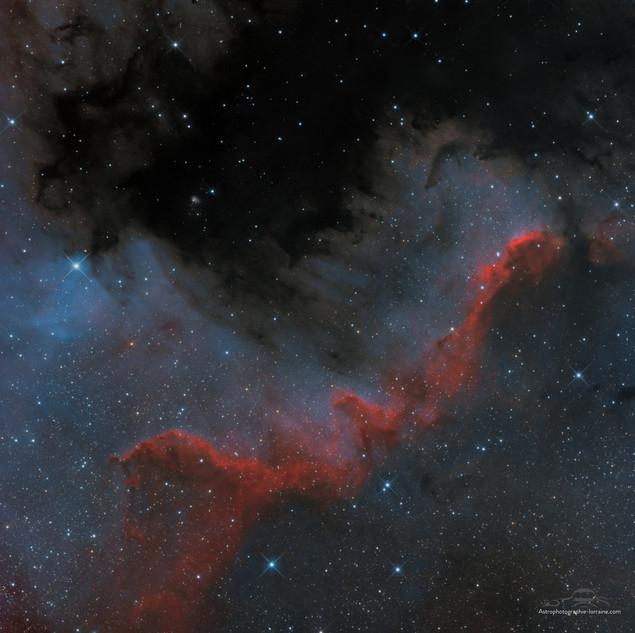 Le mur du Cygne (version RVB)