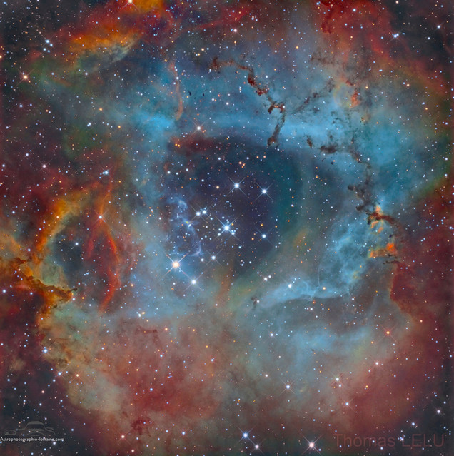 The Rosette Nebula (SHO version)