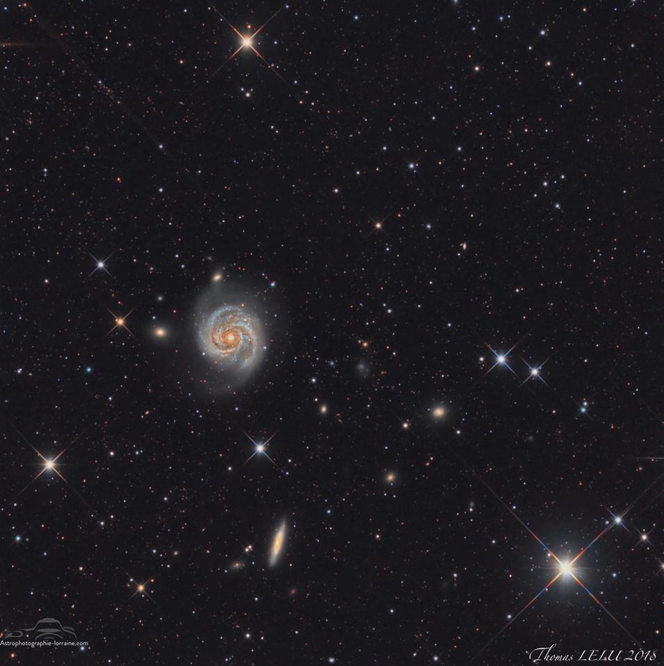 The Berenice Galaxy