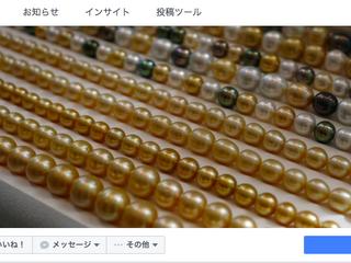 宇土真珠Facebookスタート