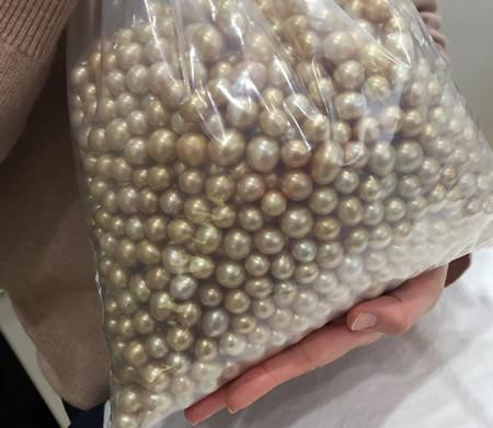 宇土真珠のルースフェア