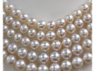 真珠を愛する人に。