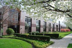 msu-bioeconomy-institute