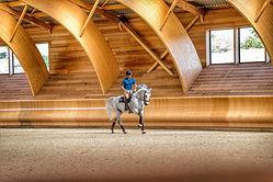 photographe-professionnelle-cheval