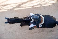 photographe-professionnelle-chevaux