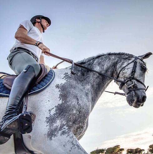 photographe-professionnelle-chevaux-jessica-rodrigues