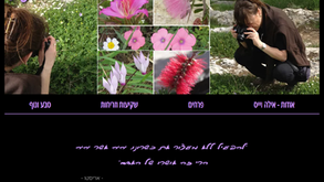 אילה וייס | צילום טבע - פרחים, שקיעות, נוף, בעלי חיים